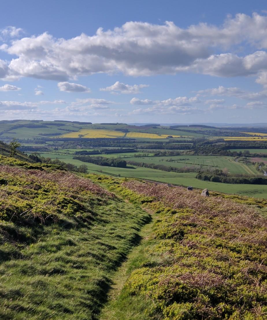 Green Light, Northumberland: Greening the Post-CovidEconomy